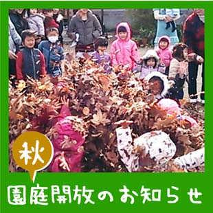 落ち葉と遊ぼう!(園庭開放)のイメージ